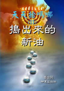 book5chinese_355x500
